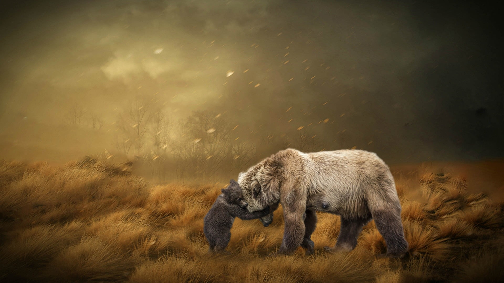 faith mother bear christ