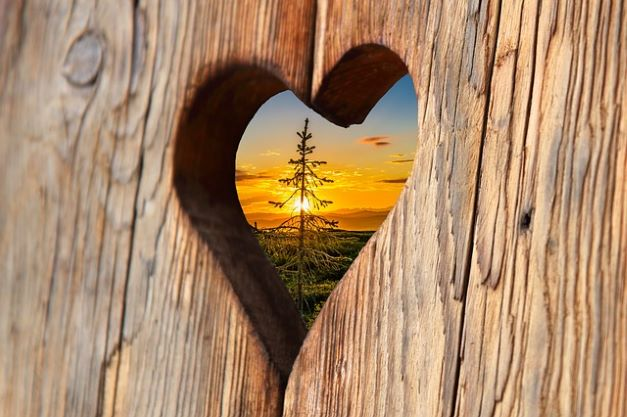 heart wood love sunset romantic wood structure nature board